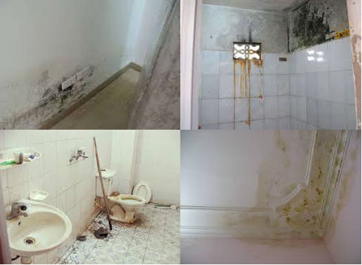 tác hại phổ biến khi nhà vệ sinh bị thấm dột